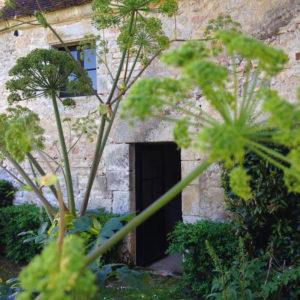 """""""Rendez-vous aux Jardins"""" c'est le week-end prochain à la Chartreuse"""