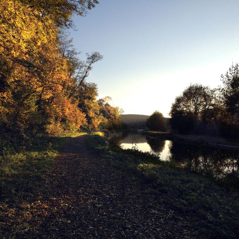 L'automne sur le canal du Nivernais, Chartreuse de Basseville, automne 2016.