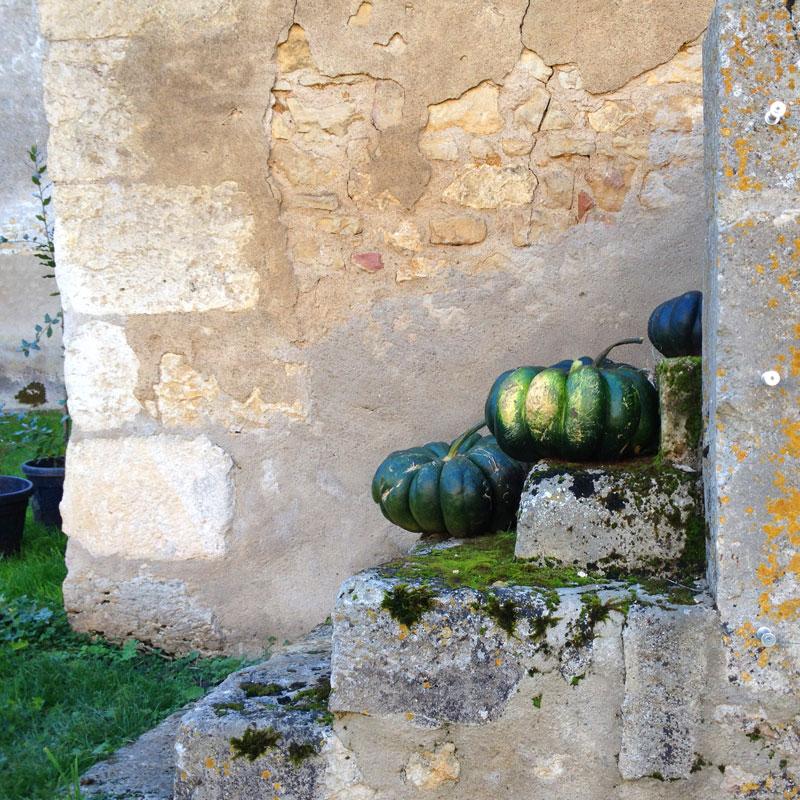 Courges à la Chartreuse de Basseville.