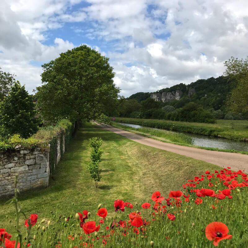 Les coquelicots en fleurs et les roches de Basseville au mois de juin.
