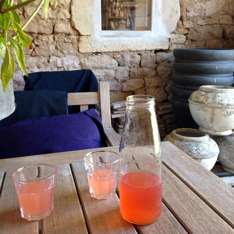 Jus de rhubarbe à la Chartreuse de Basseville. L'été est rose !