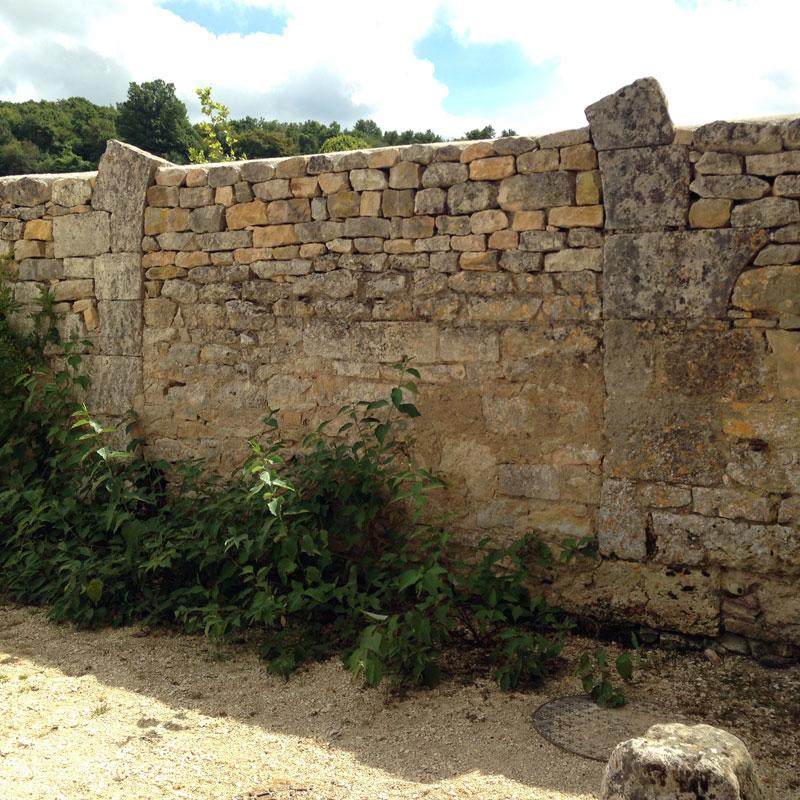 Emplacement supposé de l'ancien auditoire de la Chartreuse de Basseville, été 2016.