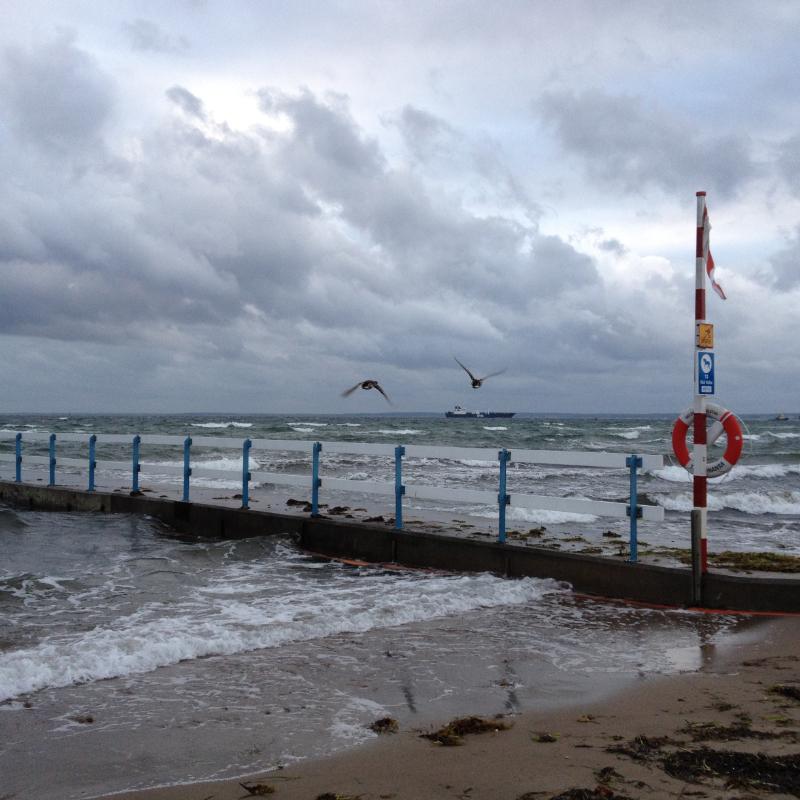 Grand vent sur la côte de Scanie, detroit de l'Oresund en Suède. Chartreuse de Basseville.