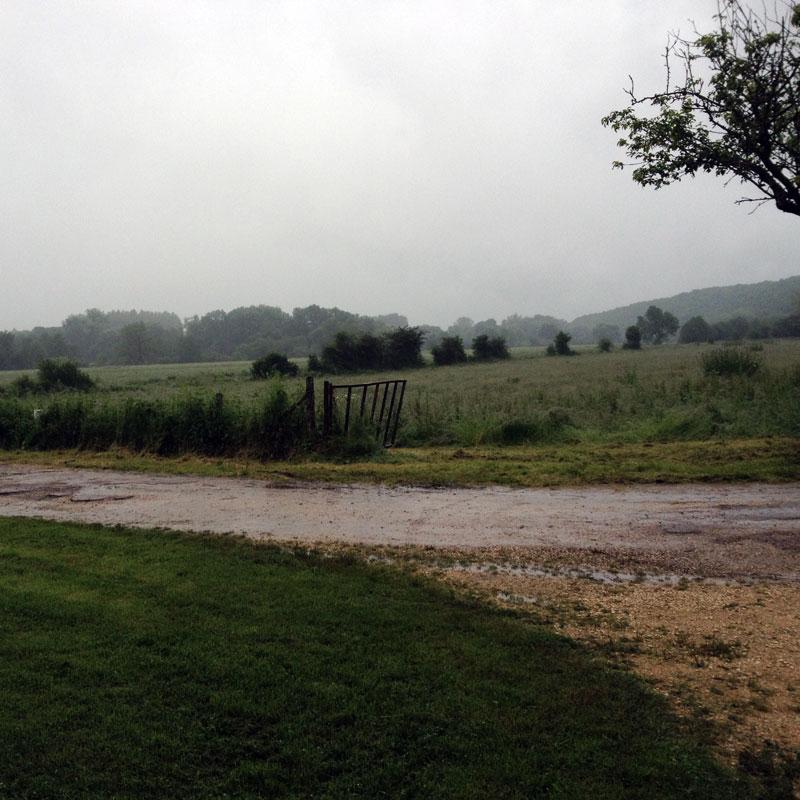Rendez-vous aux jardins à la Chartreuse de Basseville, juin 2016.