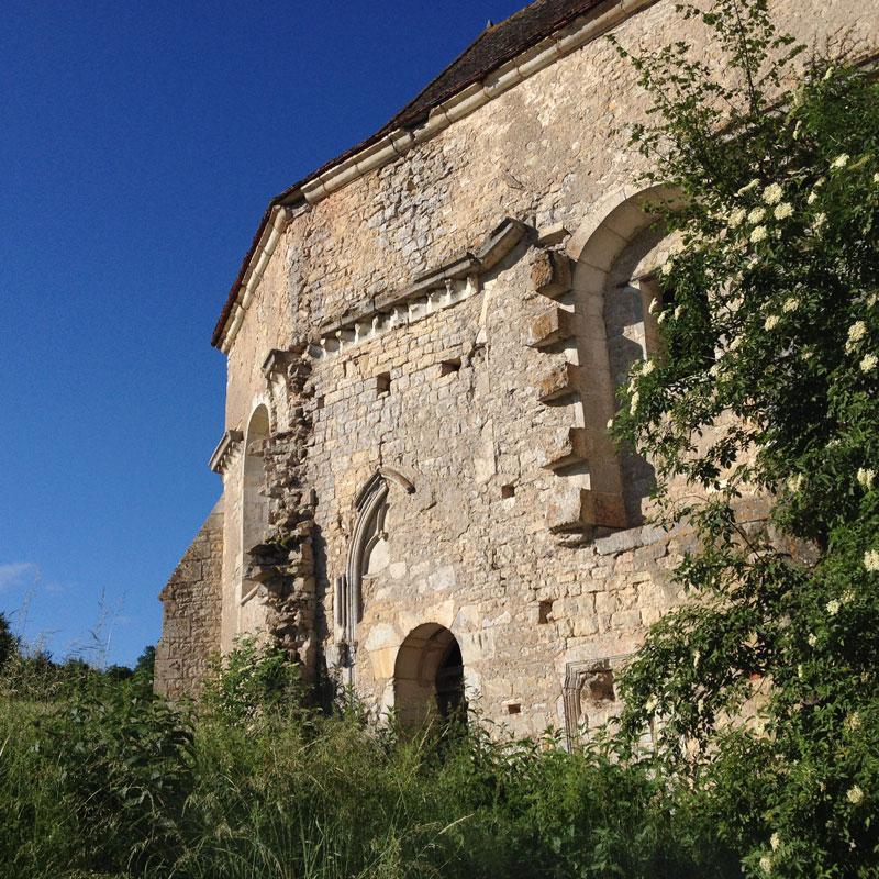 Rendez-vous aux jardins 2017 à la Chartreuse de Basseville. Le sureau adossé à l'église.