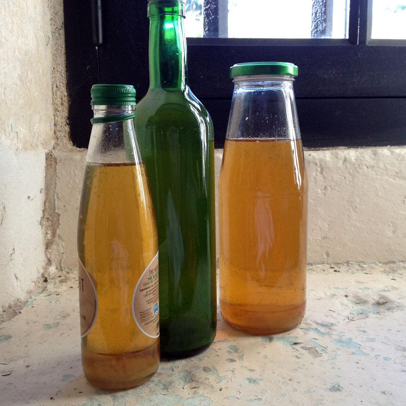 Sirop de sureau en bouteilles. Chartreuse Notre-Dame du Val Saint-Jean. Printemps 2016.